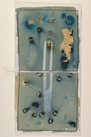 Katz.cyanotype