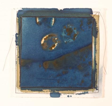 Katz.cyanotype.28