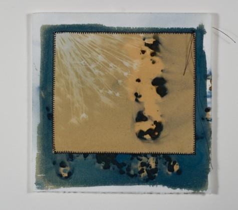 Katz.cyanotype.31